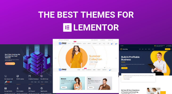 How do elementor pro users will get premium support?
